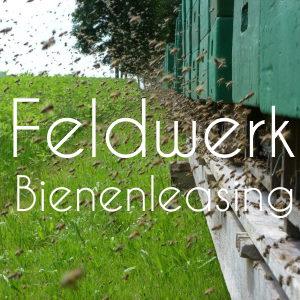 Feldwerk-Bienenleasing