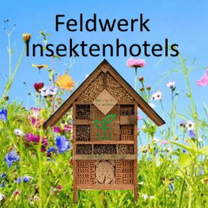 Feldwerk Insektenhotels